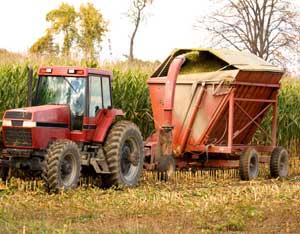 Farming and Profits